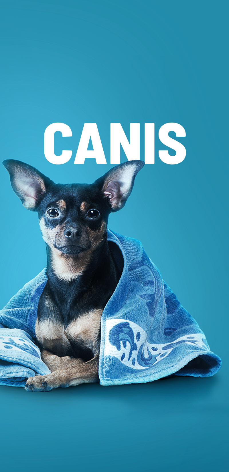 Cover_Canis_Mobile